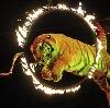 Цирки в Волгореченске