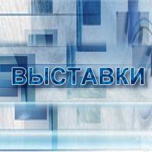 Выставки Волгореченска